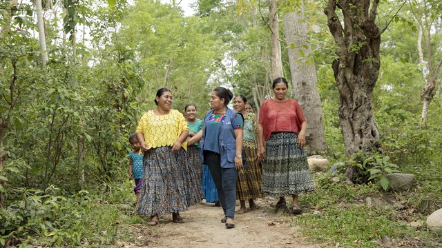 Indigenous Women's Rights and the Inter-American System: A Toolkit on Mechanisms